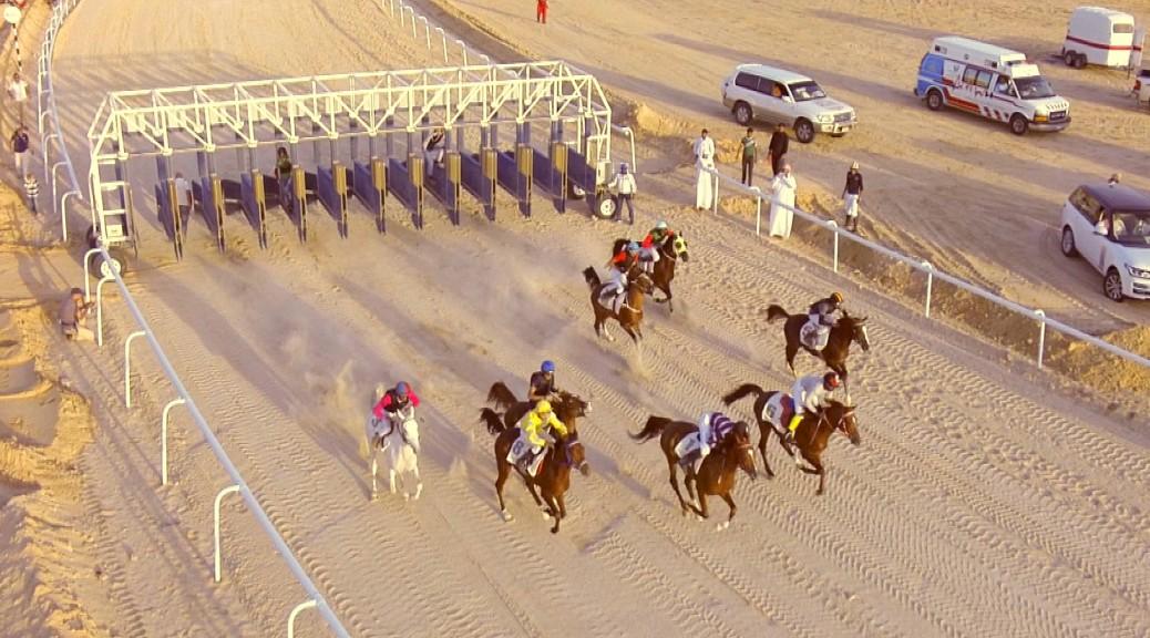Pferderennen in der Wüste von Abu Dhabi